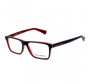Óculos Dolce & Gabanna DG 3207 1872 55 - Grau
