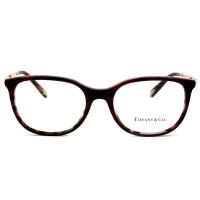 Óculos Tiffany & Co TF2149 8207 53 - Grau