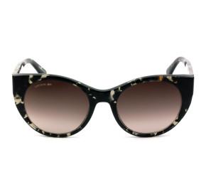 Lacoste L913S - Turtle/Marrom Degradê 220 53mm - Óculos de Sol