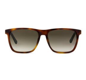 Tommy Hilfiger TH1322/S - Turtle/Marrom Degradê 0I1HA 55mm - Óculos de Sol